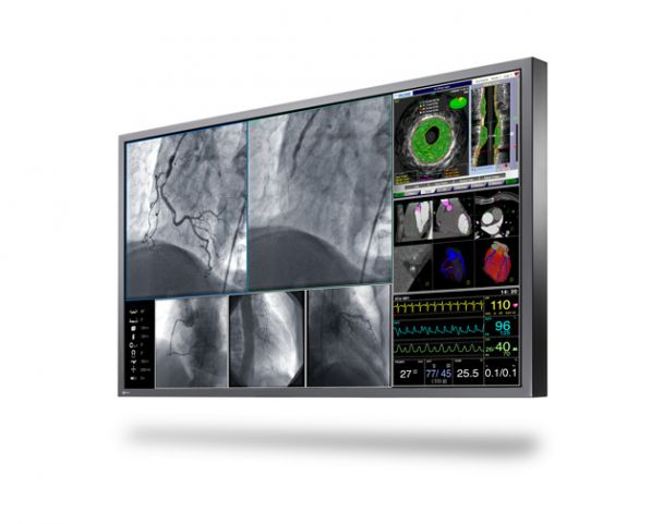 EIZO Surgical and Endoscopy Monitors